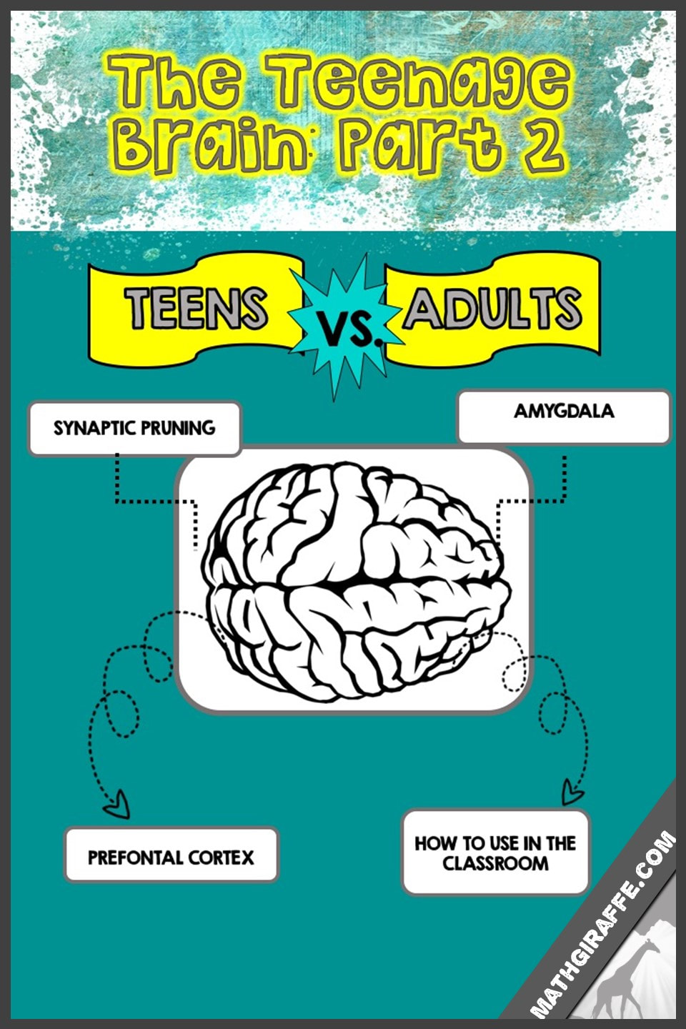 The Purpose Of Teenage Brain >> The Teenage Brain