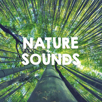 nature sounds for the classroom